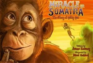 MiracleInSumatra