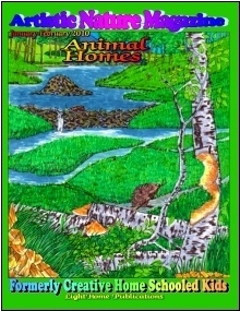 Animal Homes Cover