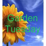 GardenTuesdaysButton